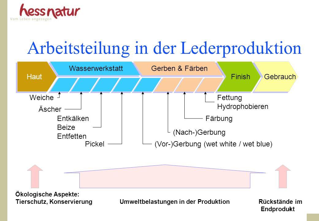 Arbeitsteilung in der Lederproduktion