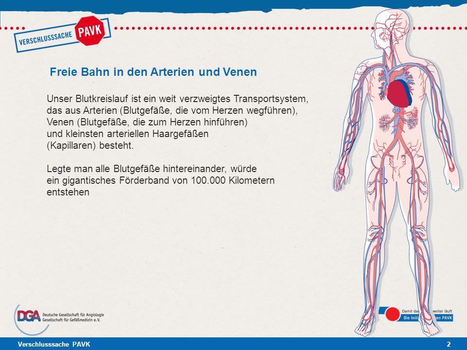 Freie Bahn in den Arterien und Venen