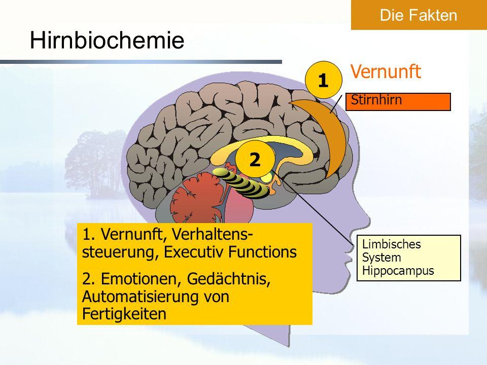 Hirnbiochemie Vernunft 1 2 Die Fakten