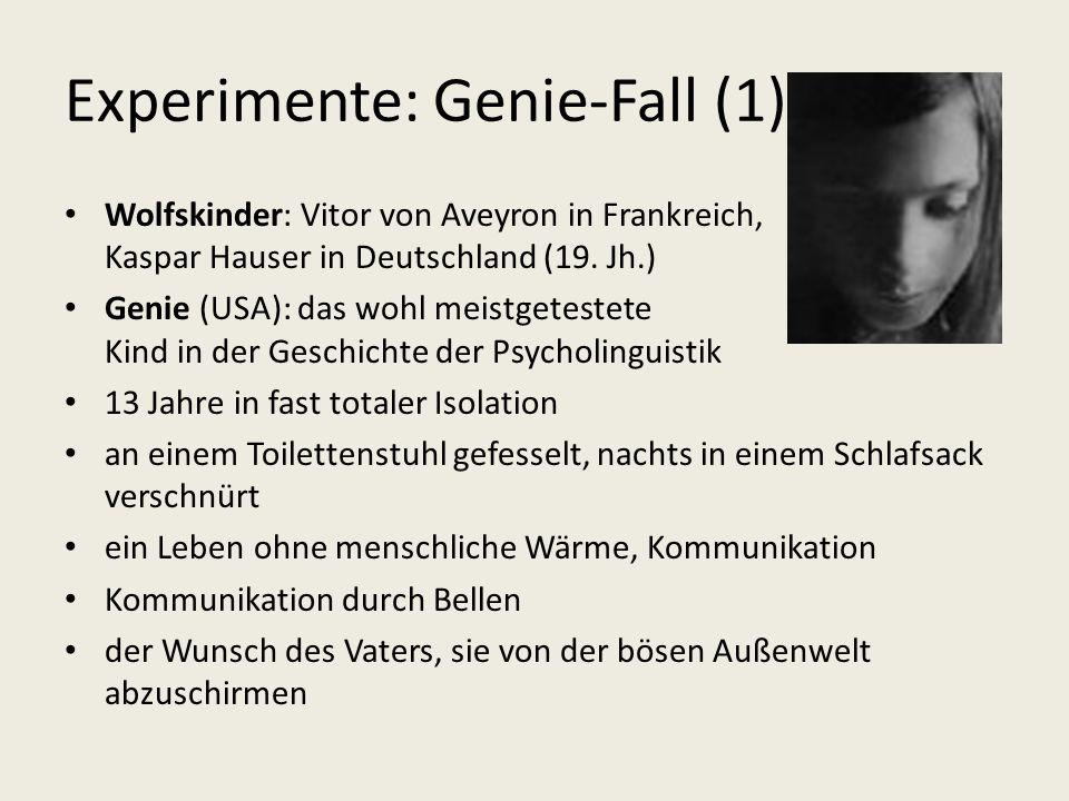 Experimente: Genie-Fall (1)