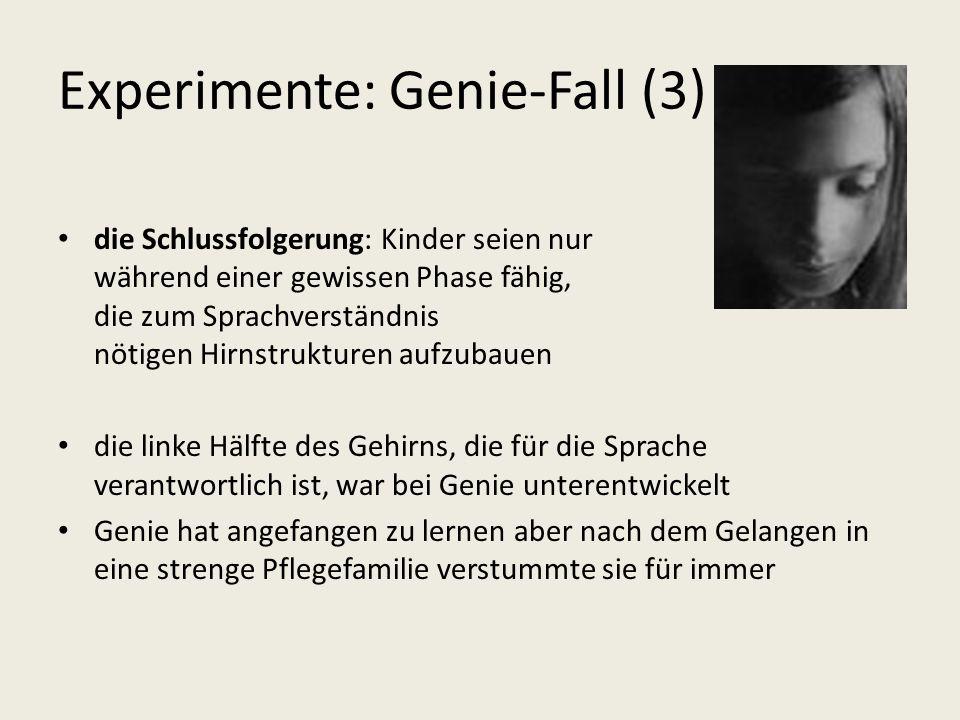 Experimente: Genie-Fall (3)