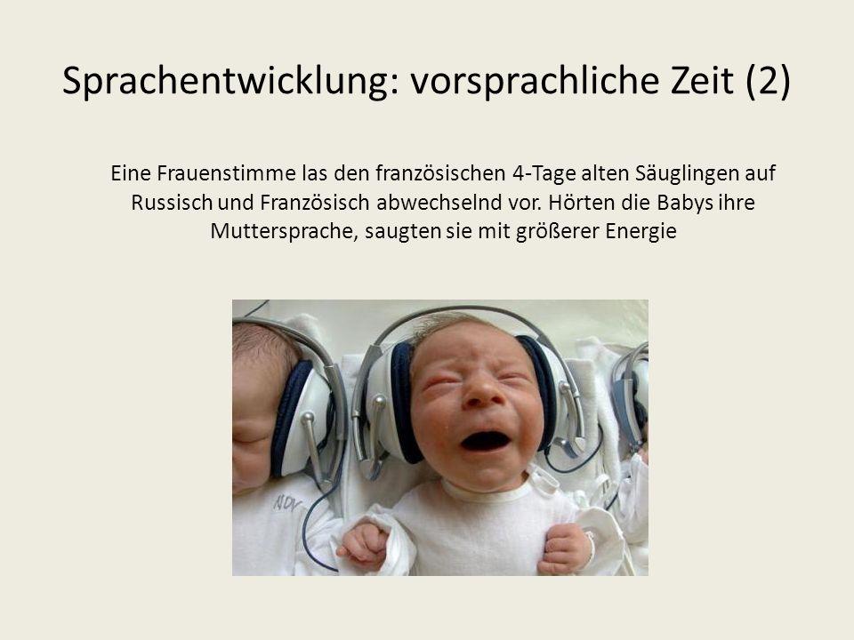 Sprachentwicklung: vorsprachliche Zeit (2)