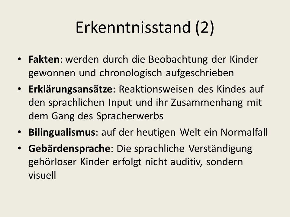 Erkenntnisstand (2) Fakten: werden durch die Beobachtung der Kinder gewonnen und chronologisch aufgeschrieben.