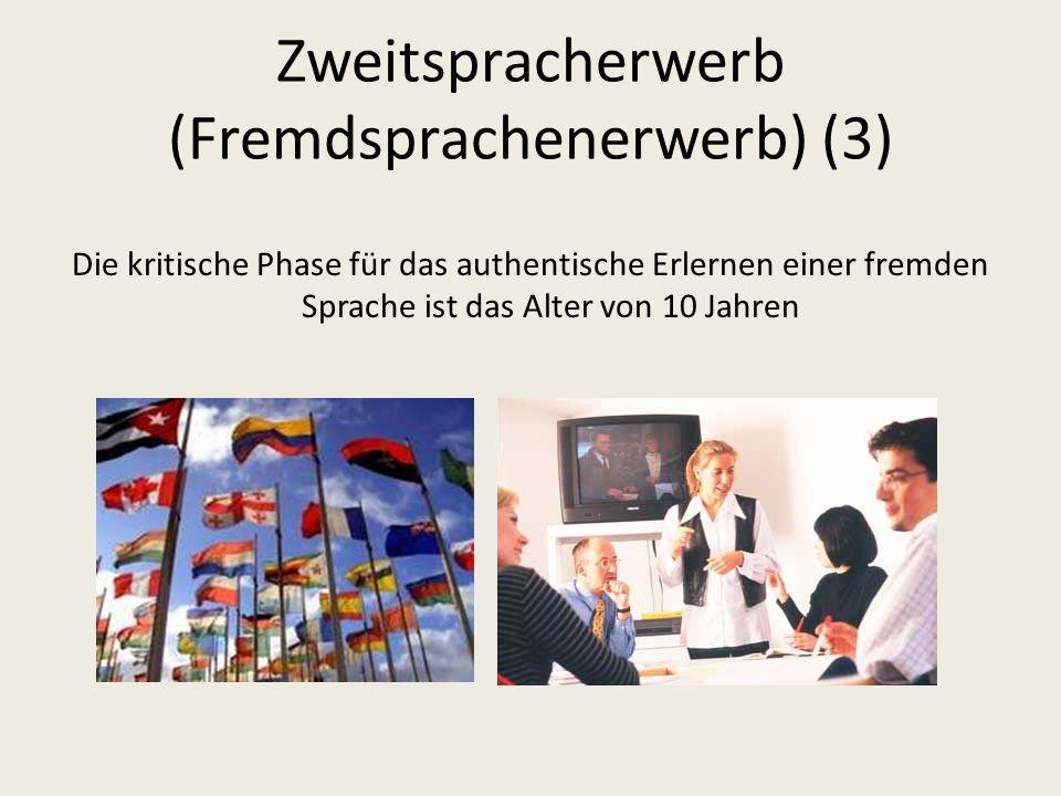 Zweitspracherwerb (Fremdsprachenerwerb) (3)