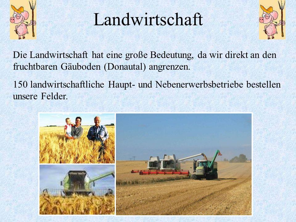 Landwirtschaft Die Landwirtschaft hat eine große Bedeutung, da wir direkt an den fruchtbaren Gäuboden (Donautal) angrenzen.