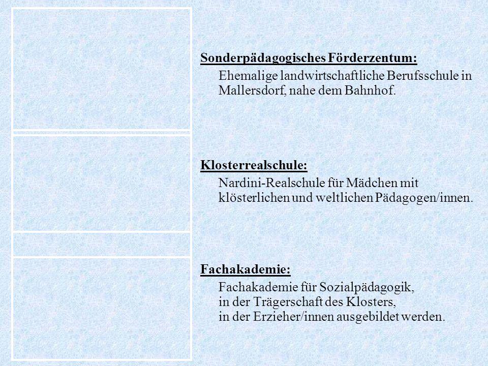 Sonderpädagogisches Förderzentum: