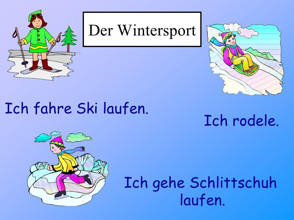 Der Wintersport Ich fahre Ski laufen. Ich rodele.