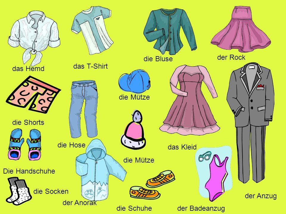 die Bluse der Rock. das T-Shirt. das Hemd. die Mütze. die Shorts. die Hose. das Kleid. die Mütze.