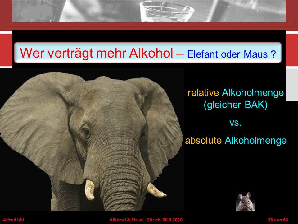 Wer verträgt mehr Alkohol – Elefant oder Maus