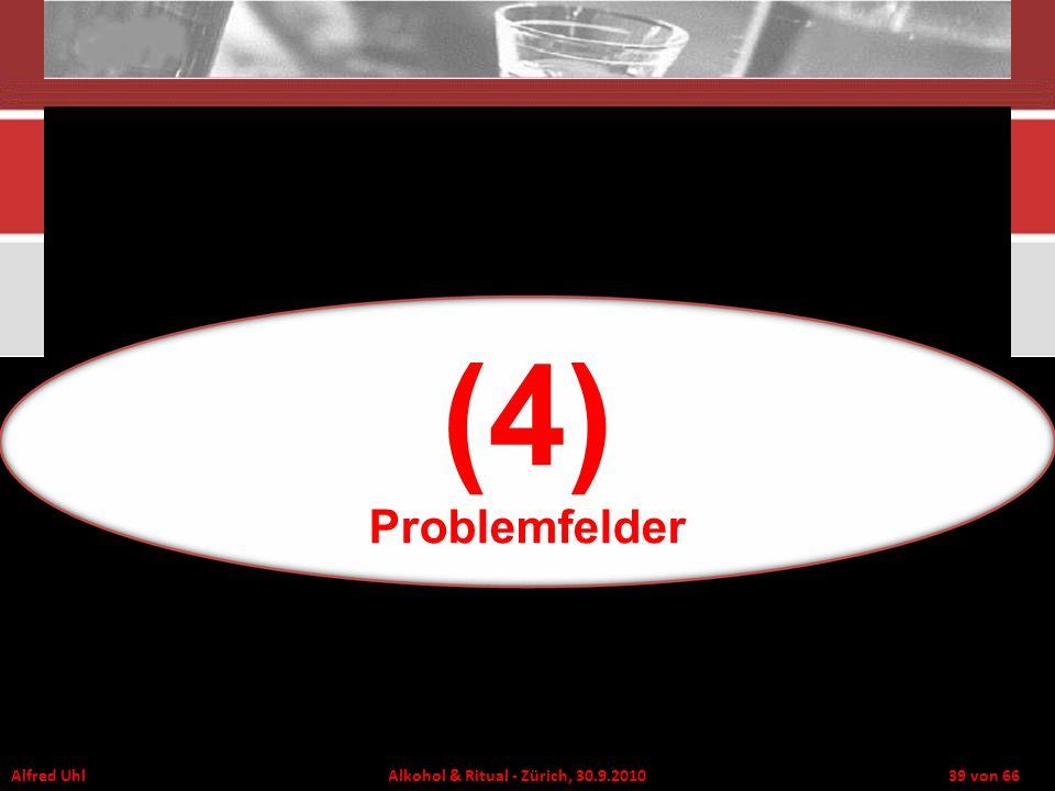 (4) Problemfelder