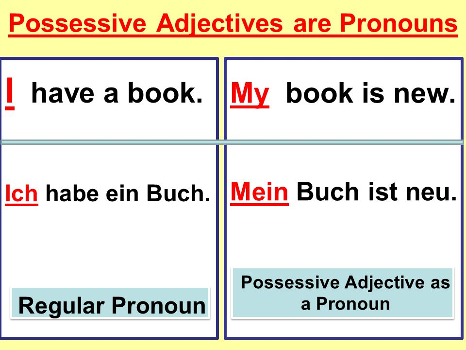Possessive Adjectives are Pronouns