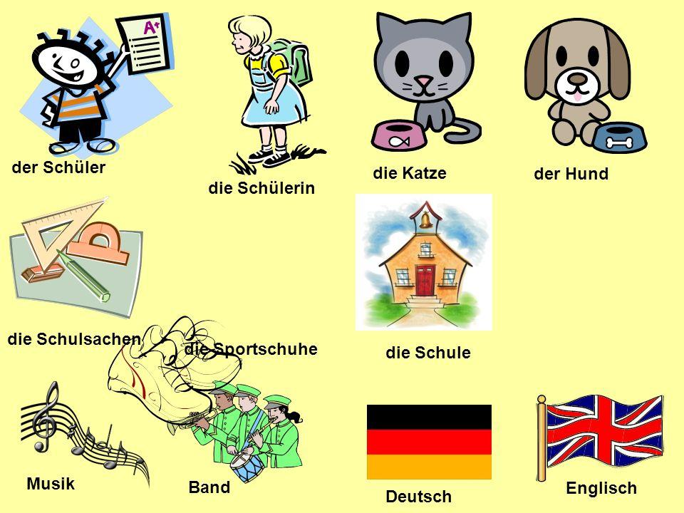 der Schüler die Katze. der Hund. die Schülerin. die Schulsachen. die Sportschuhe. die Schule. Musik.
