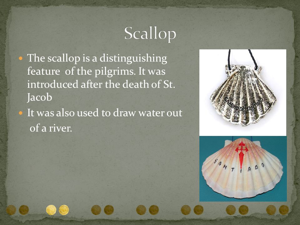 Scallop The scallop is a distinguishing feature of the pilgrims. It was introduced after the death of St. Jacob.
