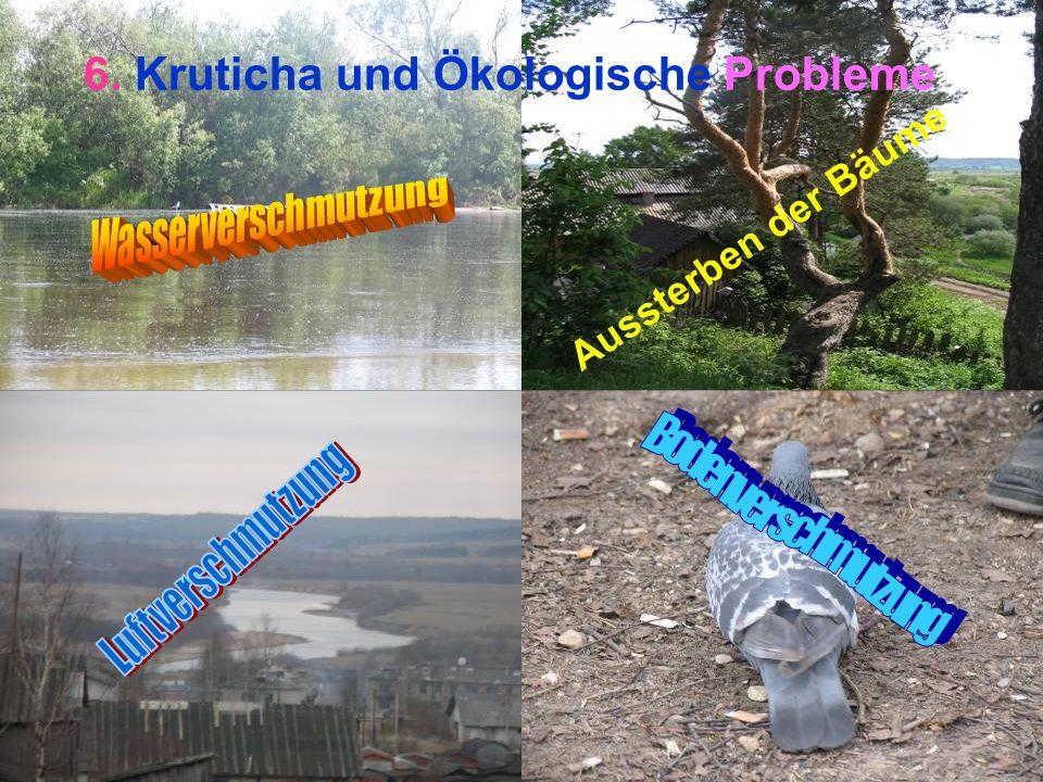 6. Kruticha und Ökologische Probleme