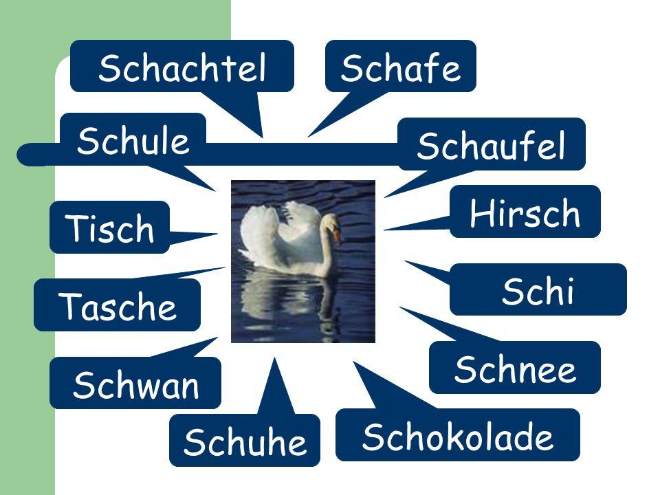 Schachtel Schafe Schule Schaufel Hirsch Tisch Schi Tasche Schnee Schwan Schokolade Schuhe