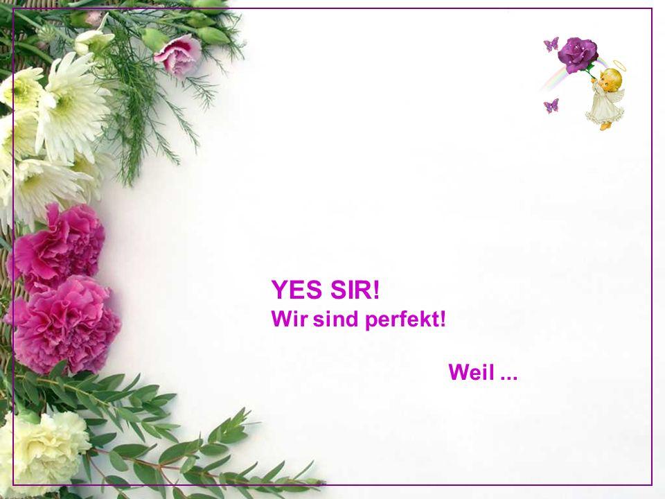 YES SIR! Wir sind perfekt!