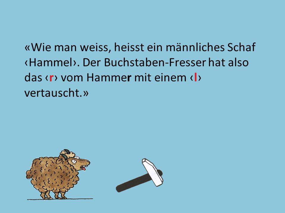 «Wie man weiss, heisst ein männliches Schaf ‹Hammel›