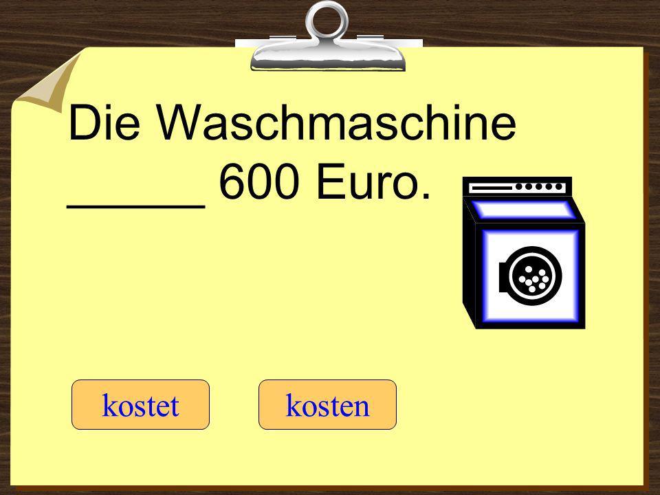 Die Waschmaschine _____ 600 Euro.