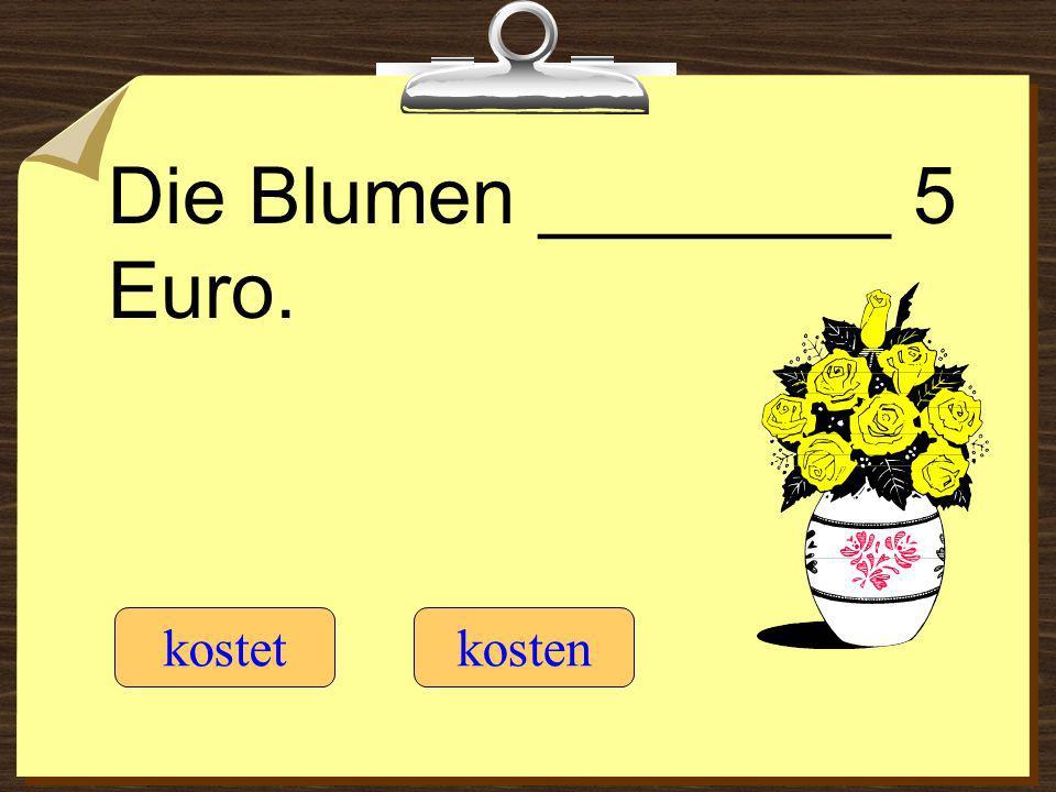 Die Blumen ________ 5 Euro.