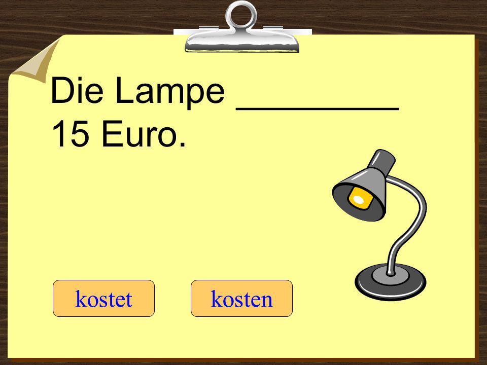 Die Lampe ________ 15 Euro.