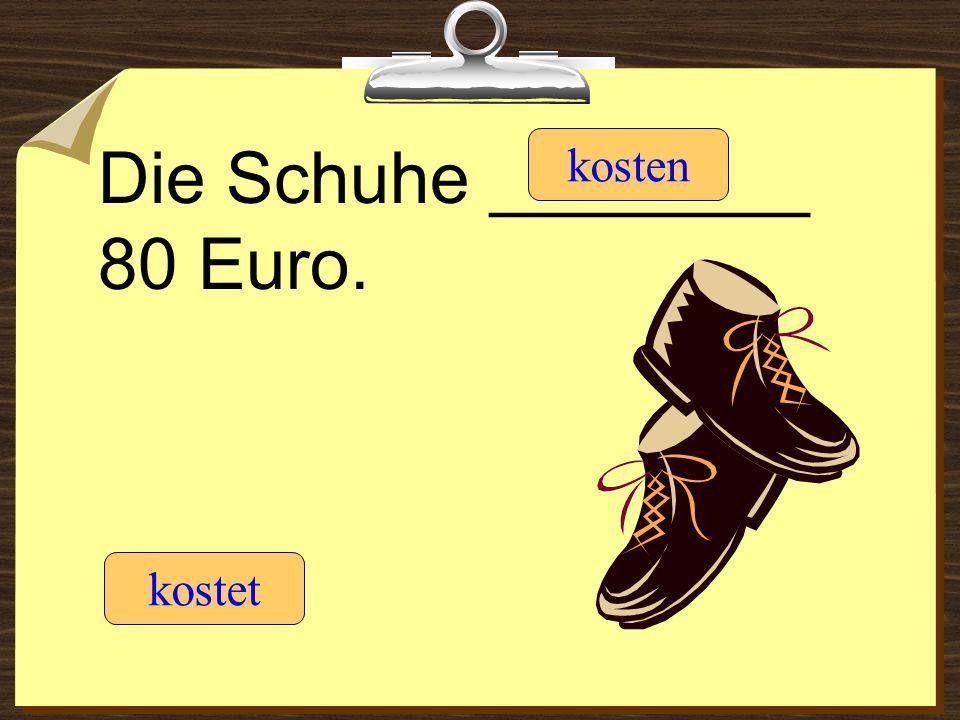 Die Schuhe ________ 80 Euro.