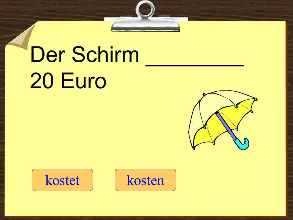 Der Schirm ________ 20 Euro