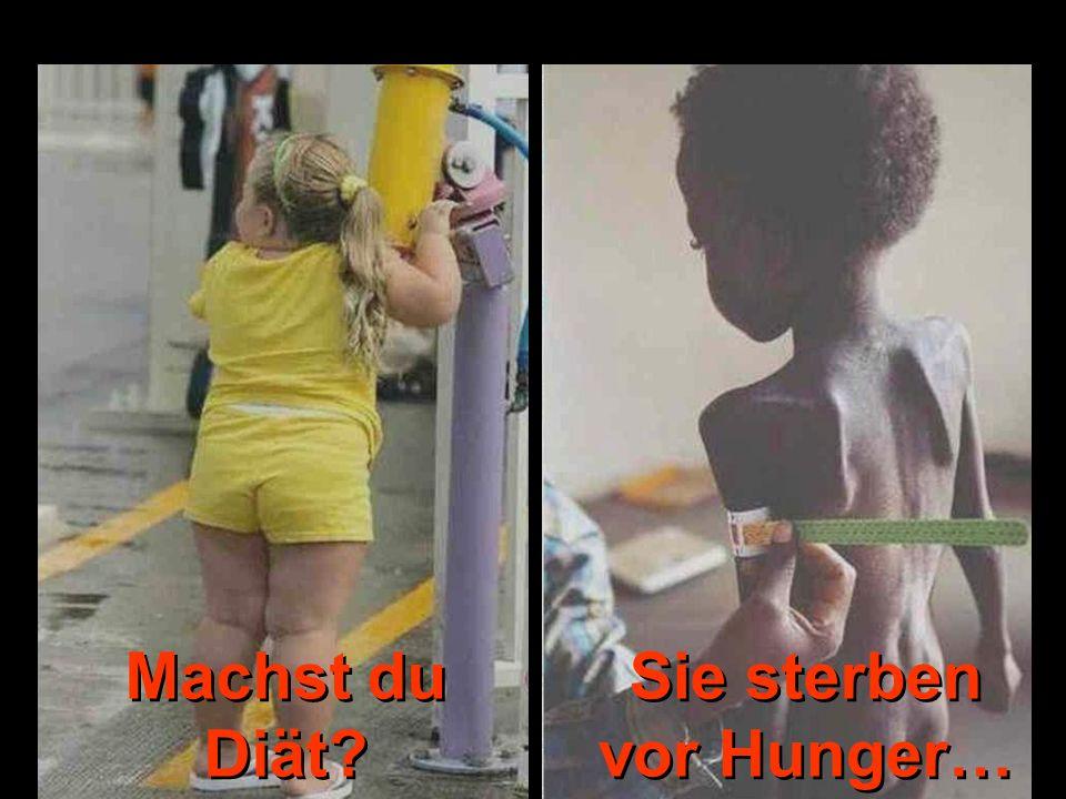 Sie sterben vor Hunger…