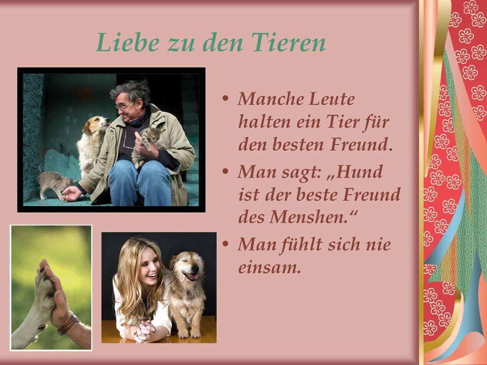 """Liebe zu den Tieren Manche Leute halten ein Tier für den besten Freund. Man sagt: """"Hund ist der beste Freund des Menshen."""