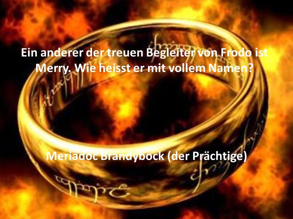 Meriadoc Brandybock (der Prächtige)