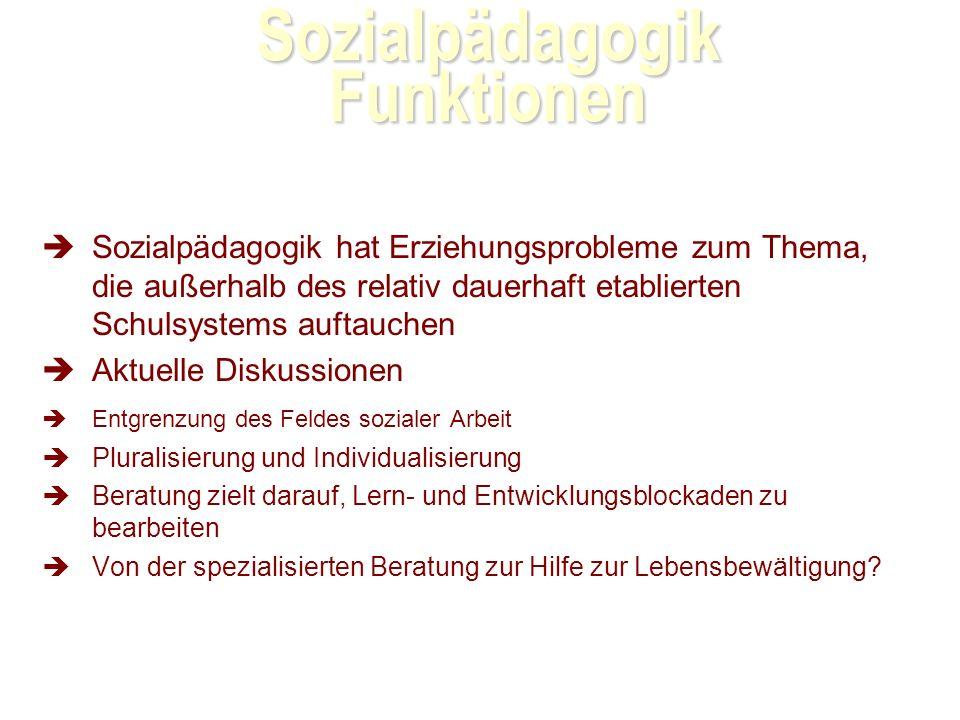Sozialpädagogik Funktionen