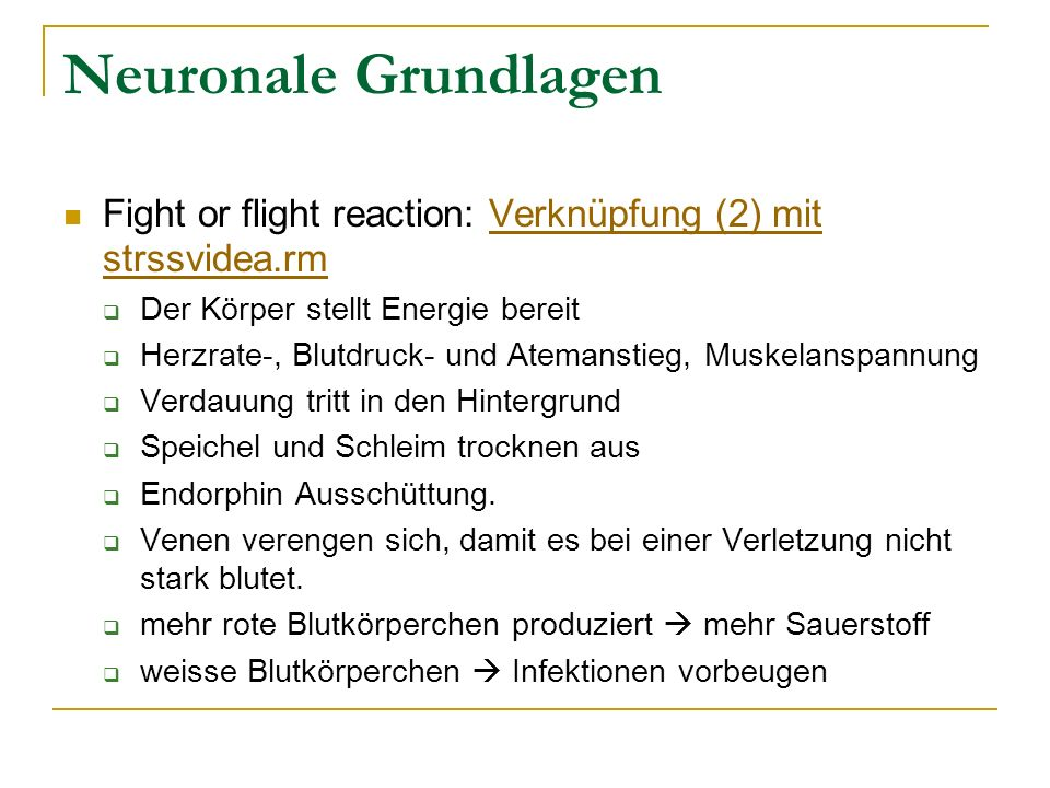 Neuronale Grundlagen Fight or flight reaction: Verknüpfung (2) mit strssvidea.rm. Der Körper stellt Energie bereit.