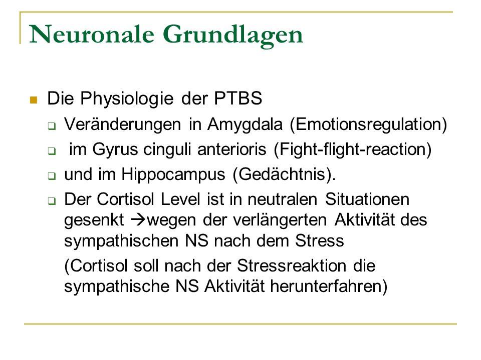 Neuronale Grundlagen Die Physiologie der PTBS