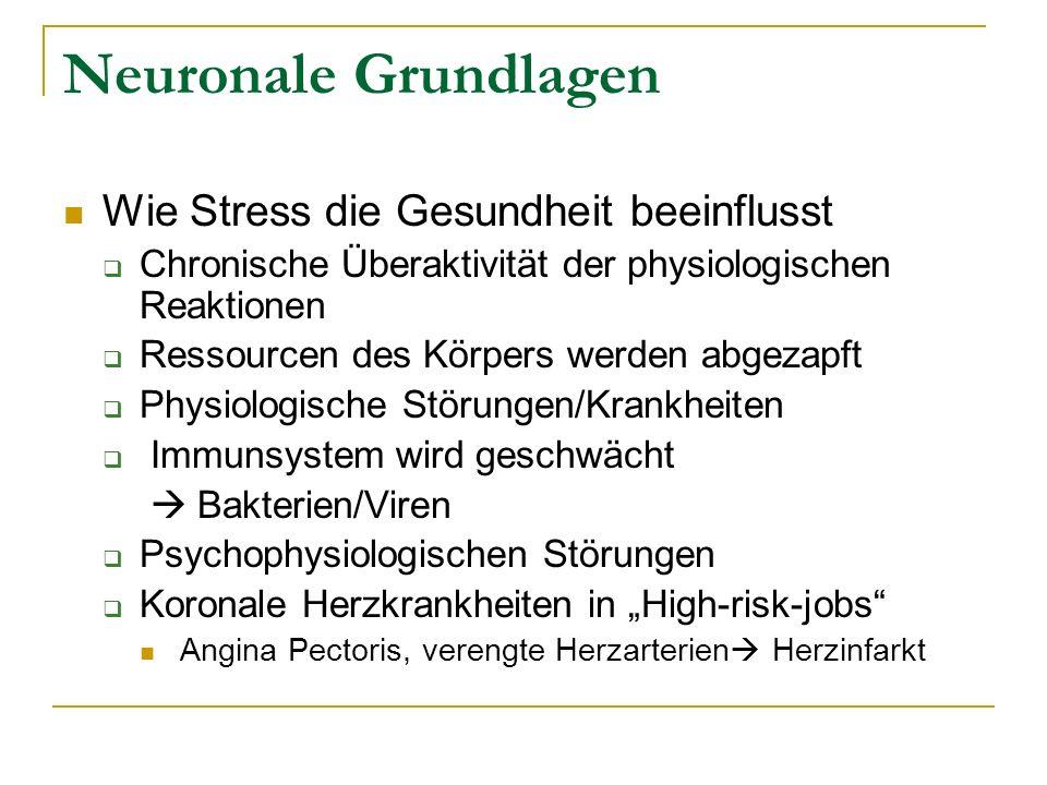 Neuronale Grundlagen Wie Stress die Gesundheit beeinflusst