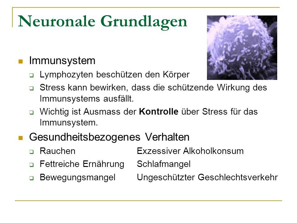 auswirkungen von stress auf das immunsystem