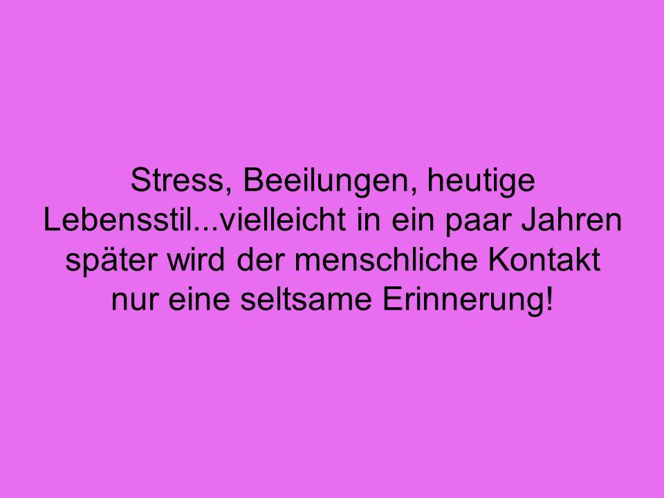 Stress, Beeilungen, heutige Lebensstil