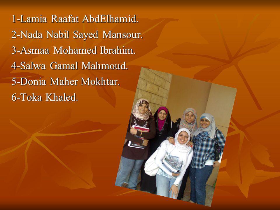 1-Lamia Raafat AbdElhamid.