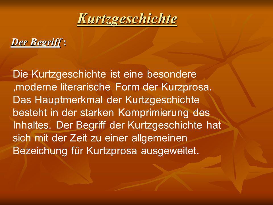 Kurtzgeschichte : Der Begriff