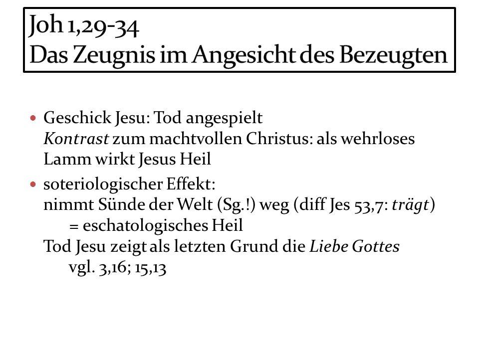 Joh 1,29-34 Das Zeugnis im Angesicht des Bezeugten
