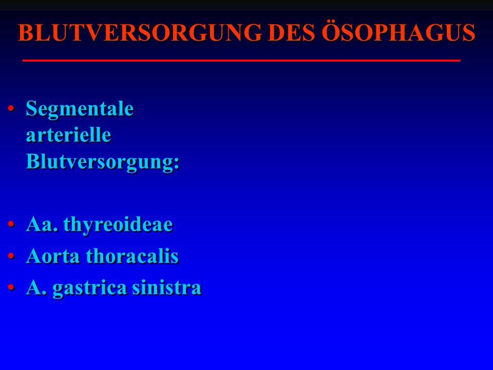 BLUTVERSORGUNG DES ÖSOPHAGUS