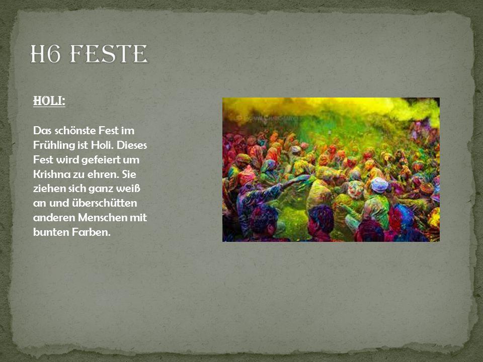 H6 Feste Holi: