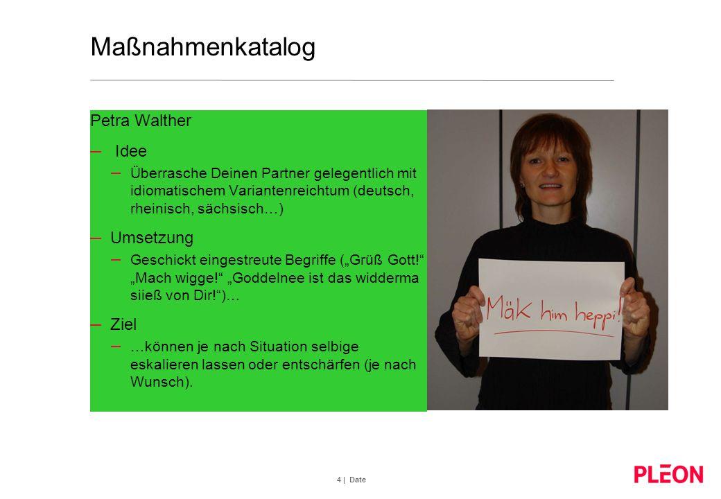 Maßnahmenkatalog Petra Walther Idee Umsetzung Ziel