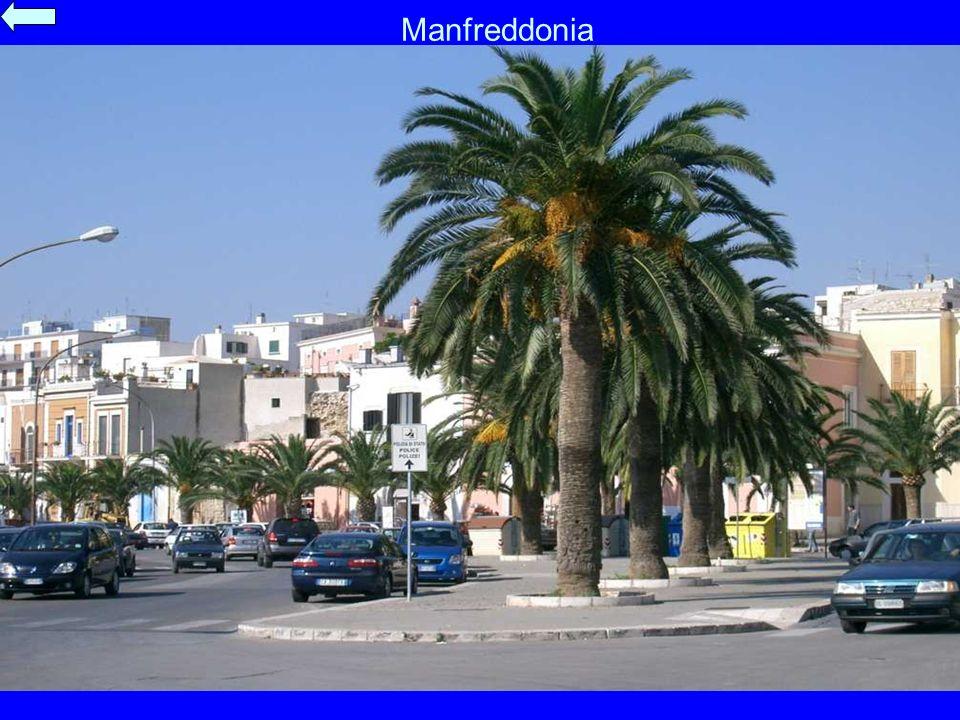 Manfreddonia