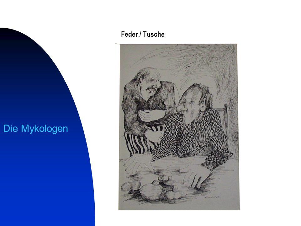 Feder / Tusche Die Mykologen
