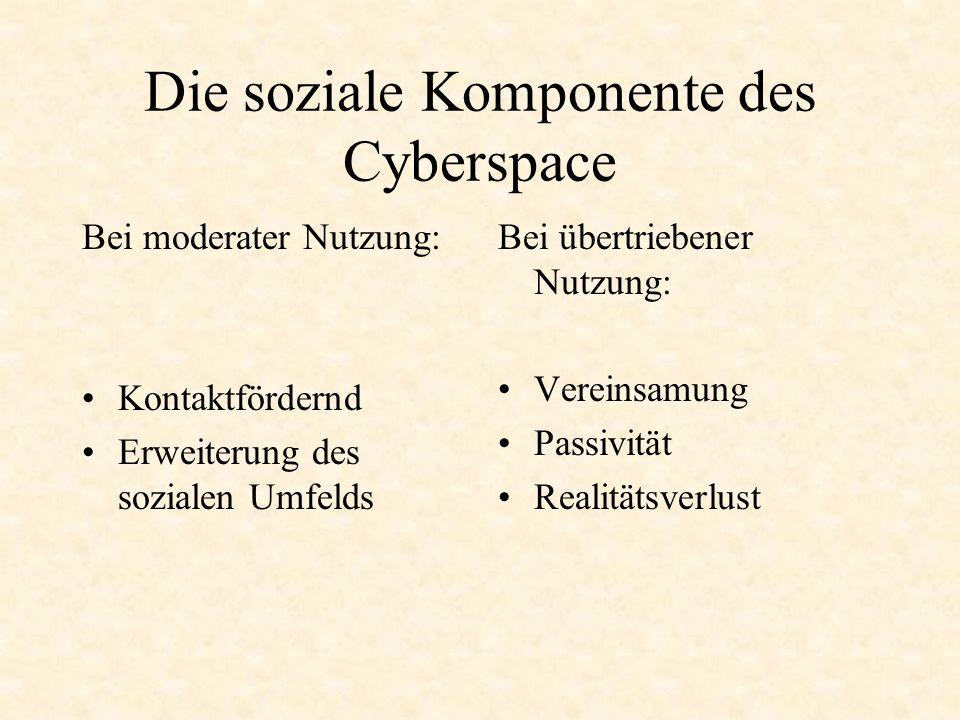 Die soziale Komponente des Cyberspace