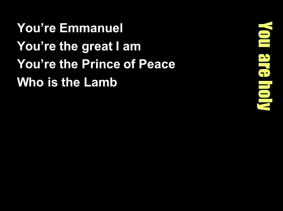 You are holy You're Emmanuel You're the great I am