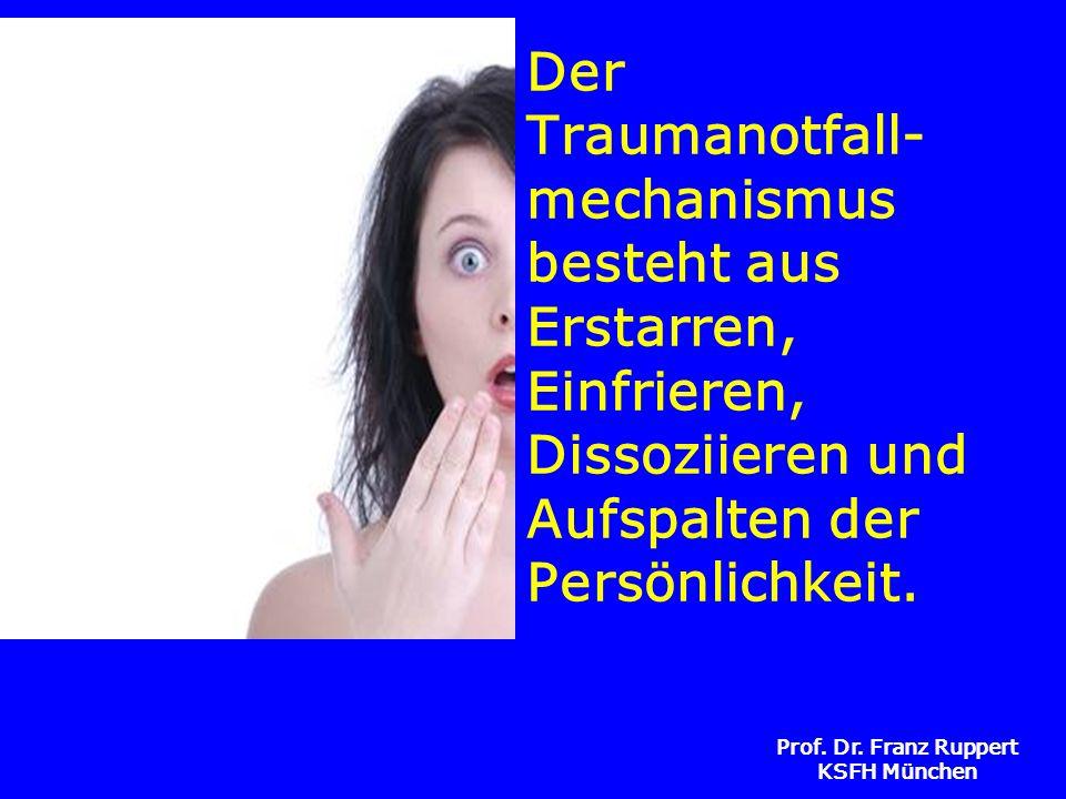 Der Traumanotfall- mechanismus besteht aus Erstarren, Einfrieren, Dissoziieren und Aufspalten der Persönlichkeit.