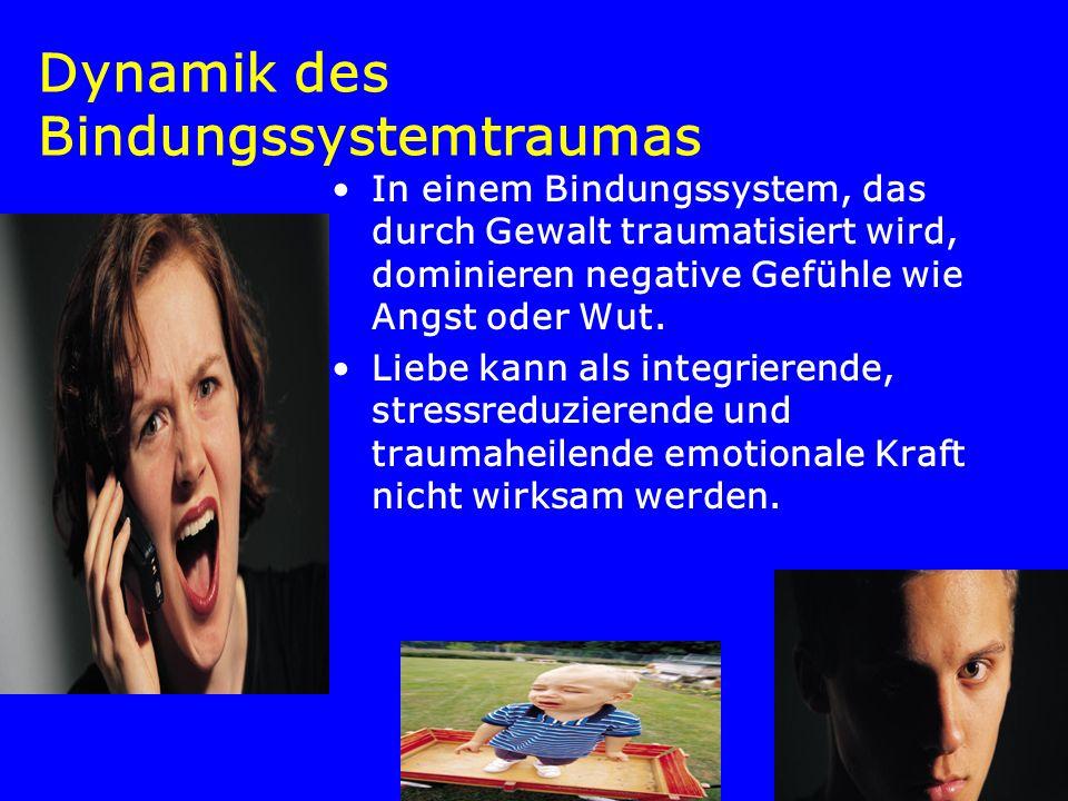 Dynamik des Bindungssystemtraumas