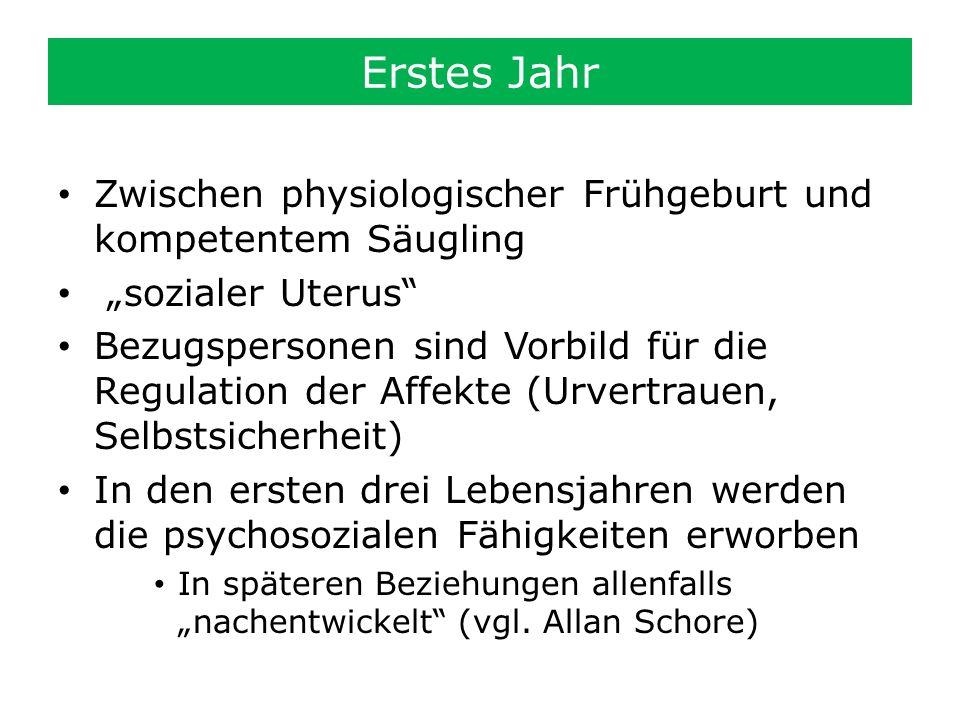 """Erstes Jahr Zwischen physiologischer Frühgeburt und kompetentem Säugling. """"sozialer Uterus"""