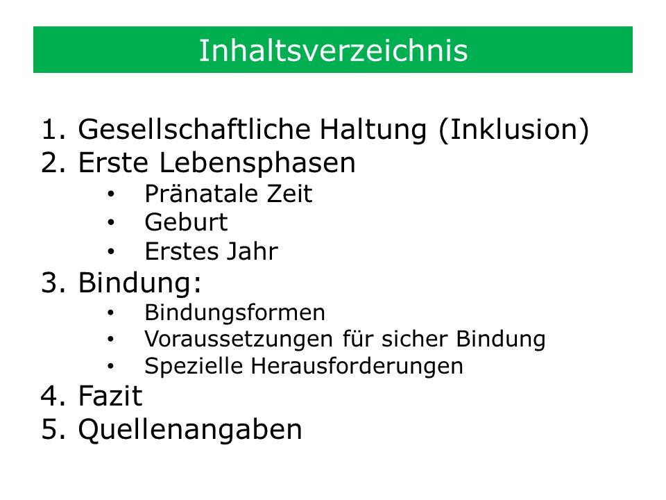 Inhaltsverzeichnis Gesellschaftliche Haltung (Inklusion)