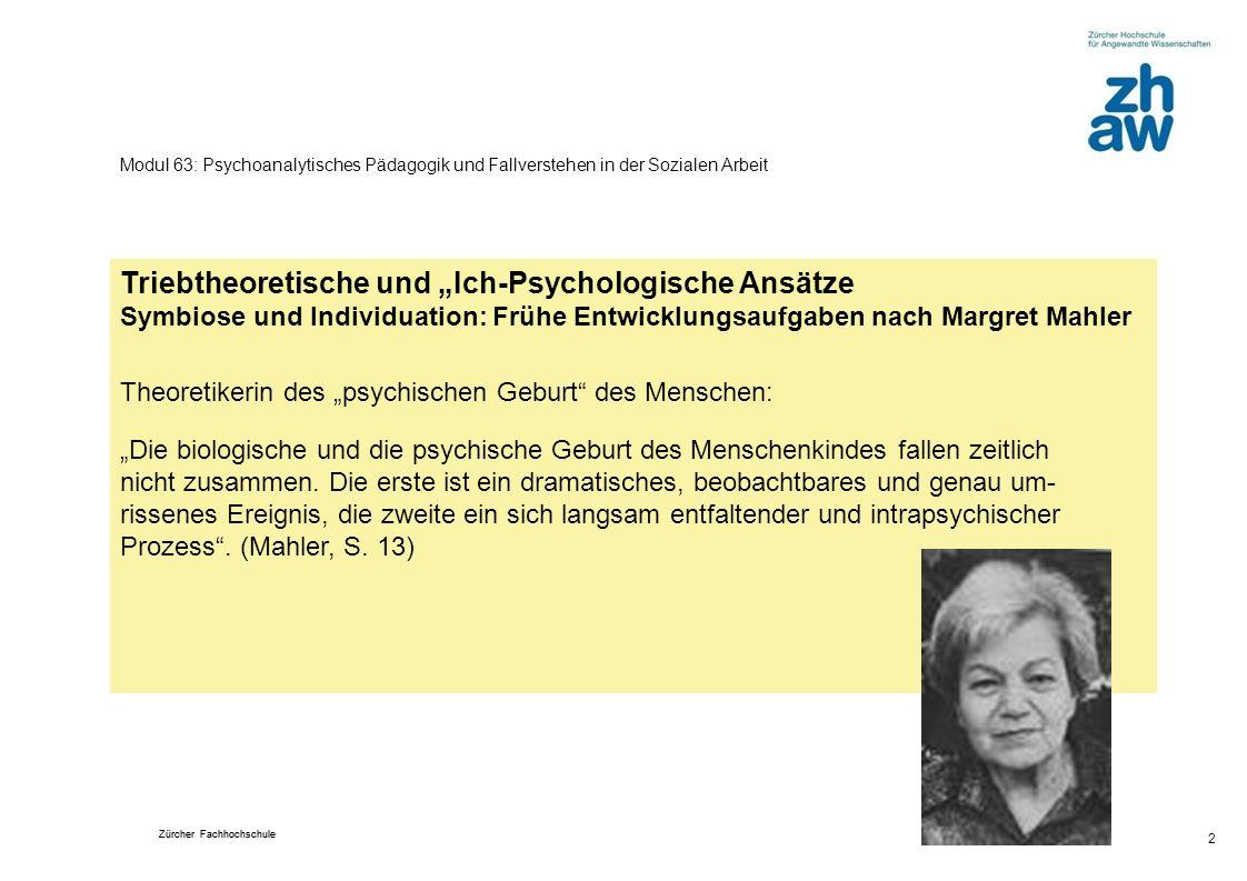 Modul 63: Psychoanalytisches Pädagogik und Fallverstehen in der Sozialen Arbeit